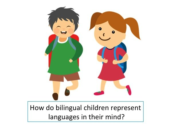 How do bilingual children represent languages in their mind?
