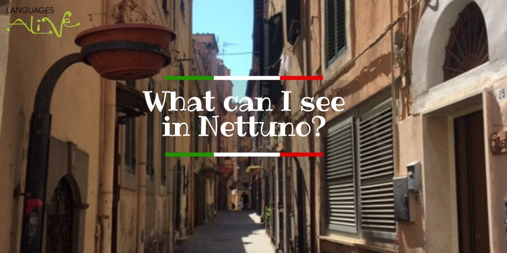 What can I see or do in Nettuno